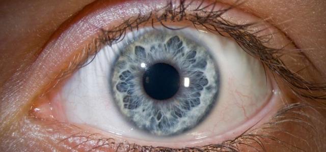 Favorisez la santé de vos yeux